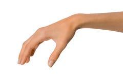 Main femelle d'isolement de femme ouverte vide en position sur un fond blanc Photo stock