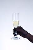 Main femelle dans le gant noir d'opéra jugeant le champagne en verre Photographie stock