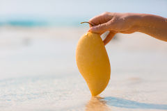 Main femelle tenant la mangue sur le fond de mer Photos libres de droits
