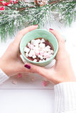 Main femelle tenant la tasse de cacao ou de chocolat chaud avec la guimauve Images stock