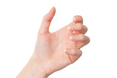 Main femelle tenant quelque chose avec la paume d'isolement sur le blanc Image libre de droits