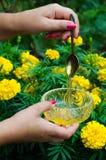 Main femelle tenant une cuillère avec du miel Photo stock
