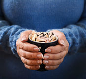 Main femelle tenant une tasse de chocolat chaud avec la guimauve Image stock