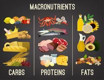 Main food groups. Macronutrients. Carbohydrates, fats and proteins in comparison. Dieting, healthcare and eutrophy concept. Vector illustration isolated on a vector illustration