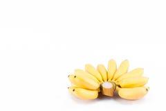 Main fraîche des bananes d'or sur la nourriture saine de fruit de Pisang Mas Banana de fond blanc d'isolement Image stock