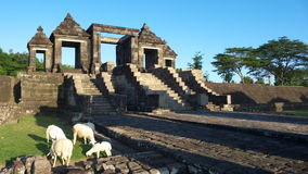 Main gate of ratu boko palace Stock Photos