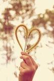 Main humaine tenant la fleur d'herbe de coeur-forme Concept d'amour Photos libres de droits