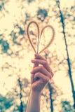 Main humaine tenant la fleur d'herbe de coeur-forme Concept d'amour Image stock