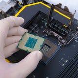 Main humaine tenant le processeur moderne Photos libres de droits