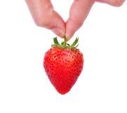Main jugeant la fraise rouge d'isolement sur le blanc Photo libre de droits