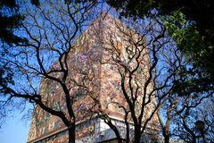 Main library, UNAM campus Royalty Free Stock Photography