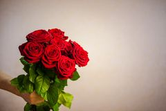 Main masculine tenant un bouquet de fond de beige de roses rouges photographie stock