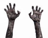 Main noire de la mort, la marche complètement, thème de zombi, thème de Halloween, mains de zombi, fond blanc, mains de maman Photos libres de droits