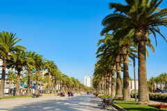 Main palm alley in Salou. Spain, blue sky Stock Images