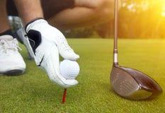 Main plaçant une pièce en t avec la boule de golf Photo stock