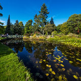 The main pond of The National Botanic Gardens in Dublin Stock Images