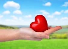 Main retenant le coeur rouge Image libre de droits