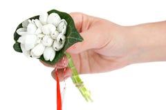 Main retenant un bouquet des baisses de neige photographie stock libre de droits