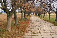 Main road of ancient fortress royalty free stock photos
