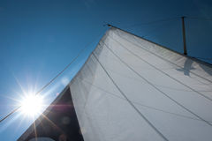 Main sail streched in wind, with bright sun in background Royalty Free Stock Photo