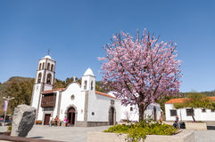 Main square of the city Santiago del Teide and almond tree Stock Photo