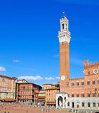 The main square of Siena. Stock Image
