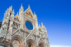 The main square of Siena. Stock Images