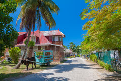 Main Street Of La Passe On La Digue. Colourful La Passe and waiting bullock and cart (local taxi Stock Photos