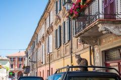 Main Street in Volpedo stockbilder