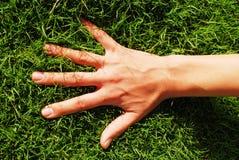 Main sur l'herbe Image libre de droits