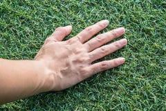 Main sur l'herbe verte Photographie stock libre de droits