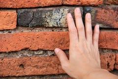 Main sur le vieux mur Images stock