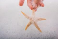 Main tenant des étoiles de mer dans l'eau mousseuse Photos libres de droits
