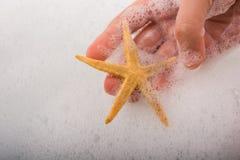 Main tenant des étoiles de mer dans l'eau mousseuse Photographie stock