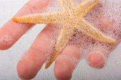 Main tenant des étoiles de mer dans l'eau mousseuse Photographie stock libre de droits