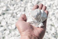 Main tenant l'amidon blanc de tapioca Image libre de droits