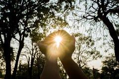 Main tenant la lumière du soleil Photographie stock