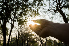 Main tenant la lumière du soleil Image stock