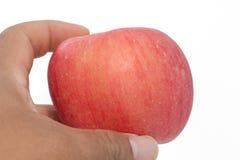 Main tenant la pomme sur le fond blanc Photographie stock