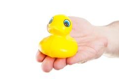 Main tenant le canard jaune en caoutchouc de jouet Photos stock