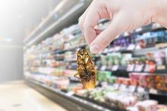 Main tenant le cancrelat dans le supermarché Image libre de droits