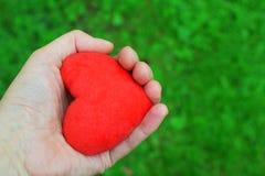 Main tenant le coeur rouge sur le vert photo stock