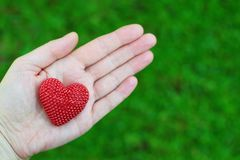 Main tenant le coeur rouge sur le vert photos stock