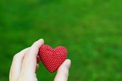 Main tenant le coeur rouge sur le vert photos libres de droits