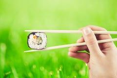 Main tenant le petit pain de sushi utilisant des baguettes Photographie stock libre de droits