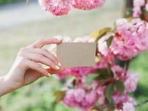 Main tenant une carte de visite d'entreprise artisanale, cadeau, billet, passage, fin actuelle sur le fond de nature photo stock