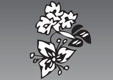 main tirée de 2 fleurs Image stock