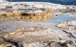 Main Travertine sinter terraces in Mammoth Hot Springs Royalty Free Stock Images