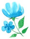 Main vectorisée d'aquarelle dessinant le thème floral Photos stock