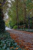 Main walkway of Botanical garden in Europe in autumn. Main walkway of Botanical garden in Europe in autumn royalty free stock photo